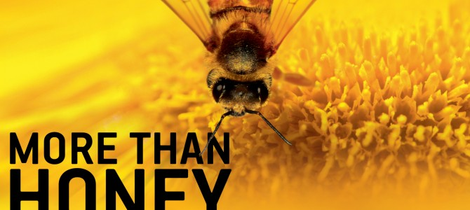 """More Than Honey"" Filmvorführung"